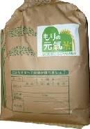もりの元氣米こしひかり玄米(20kg)